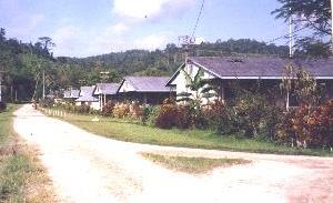 Typical PNG Health Centre